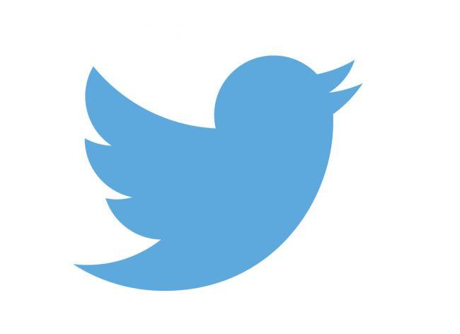 logo design twitter