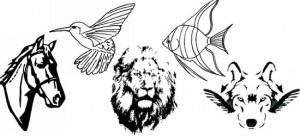 logo-design-wild-animal