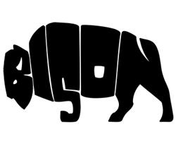 logo-design-clever-hidden-bison