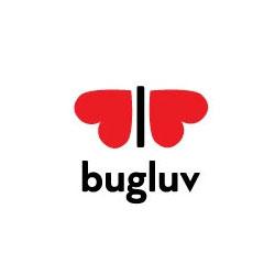 cuore-san valentino-logo-design-bug-love