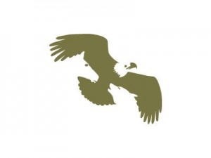 logo eagle mountain capital