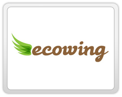 logo-design-action-showing-movement-ecowing