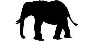 silhouette elefante