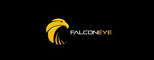 falcon-eye-logo-design-simbolico-descrittivo