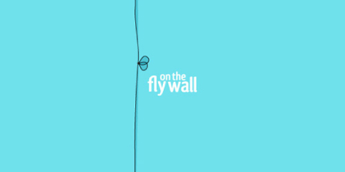 fly-on-the-wall-logo-design