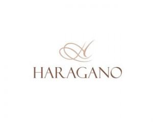 line-art-logo-design-haragano
