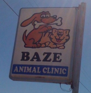 bad-logo-design-baze-animal