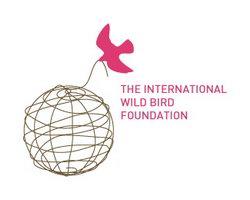 logo-design-animale-uccello-bird-foundation