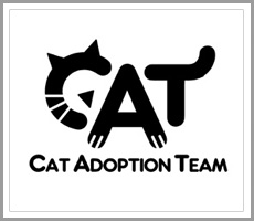 logo-design-playful-cat-adoption-team