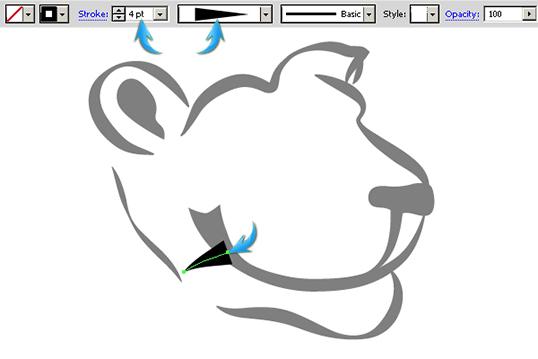 larghezza profilo illustrator