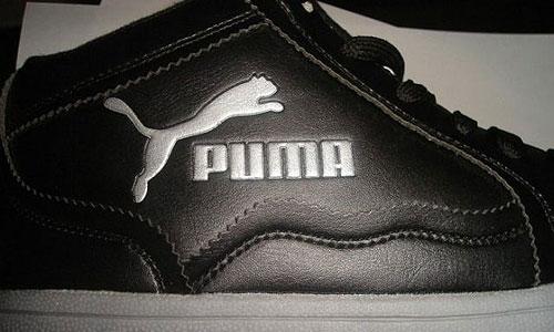 falso puma