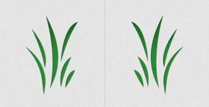 graphic-design-reflection-symmetry
